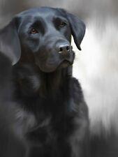 More details for nigel hemming black labrador print,  labrador gun dogs art canine gift