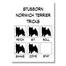 Norwich Terrier Stubborn Tricks Fridge Magnet Steel Case Funny