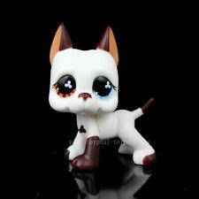 #577 Littlest Pet Shop Figure Great Dane Dog Puppy Brown White LPS Glasses Toys