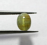 1.50 Ct Natural Rare Cats Eye Tourmaline Gemstone 6X8mm Oval Cabochon S242