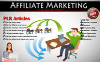 1000+ PLR Articles on Affiliate Marketing Niche Private Label Rights