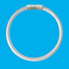 1x 22W 2GX13 4 Pin T5C Circular 228mm Lamp Fluorescent Tube 4000K Light Bulb