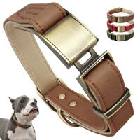 Fashion Real Leather Dog Collars Padded Heavy Duty Bulldog Corgi Schnauzer Pug