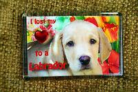 Labrador Gift Dog Puppy Fridge Magnet 77x51mm Birthday Gift Xmas Stocking Filler