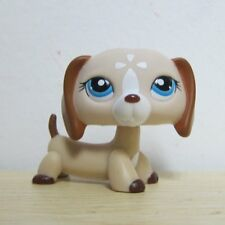 Littlest Pet Shop Collection LPS Figure #1491 Brown White Flower Dachshund Dog