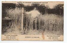 AGRICULTURE CAMPAGNE scenes champetres effets du sulfate sur les blés