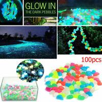 100x Luminoso Sassi Ciottoli Pietre Fluorescente Nottilucenti Stones Acquario