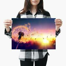 A3  Beautiful Dandelion Sunset Colours Size A3 Poster Print Photo Art Gift #3773