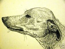 C. Francis Wardle 1935 Whippet Dog Art Print Matted