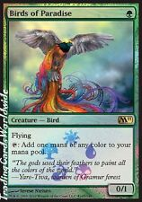 Birds of Paradise // Foil // NM // BaB: Promos // engl. // Magic the Gathering