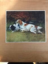 "Vintage G.Muss-Arnolt Spaniel Hunting Dogs In The Field. ""Now In The Flush� #637"