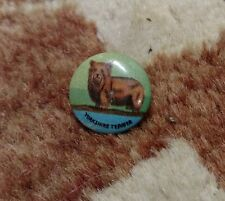 Vintage Yorkshire Terrier Cute Puppy Dog Pin Pinback Button c.1920