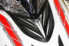 Yamaha Apex snowmobile custom carbon fiber air box cover 06-10 all models airbox