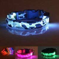 Chiens Collier Lumineux LED dans 5 Couleurs Rechargeable Accessoire Jeu Sécurité