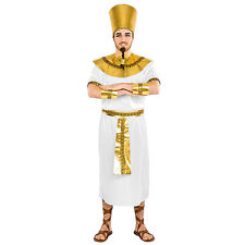 Ägypter Pharao Kostüm für Männer Ägypten Antike Set Karneval Fasching Fastnacht