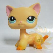 Littlest Pet Shop LPS Figure Toys Short Hair Tan Yellow  Kitty Kitten Cat #339 B