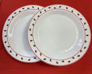 ARC Arcopal France 2x 10 in Dinner Plates Red & Green Design . Milk Glass