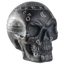 Mystic Arts Skull Figurine Statue Skeleton Halloween