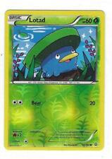 New listing Pokemon - Lotad - Xy Primal Clash! Reverse Holo! Mint! 10/160 *Fresh*