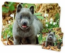 Blue Schipperke Dog Twin 2x Placemats+2x Coasters Set in Gift Box, AD-BS1PC