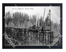 Historic Sorenson Logging Co. - Svensen, Oregon Train Tracks Postcard