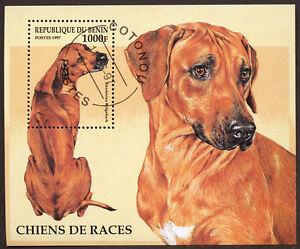 RHODESIAN RIDGEBACK Dog Postage Stamp Souvenir Mini Sheet BENIN - 1997 Used