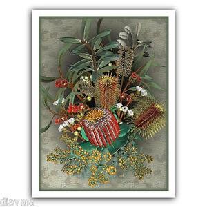 © ART Exotic Wildflowers Australian Botanical Flower Bouquet Artist print by Di