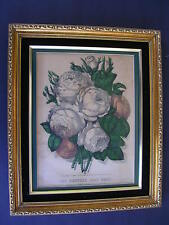 """CURRIER & IVES,1870 """"THE HUNDRED LEAF ROSE"""",FRAMED READY TO DISPLAY,VERY NICE"""