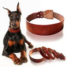 Heavy Duty Genuine Leather Dog Collar for German Shepherd Pitbull XS S M L XXL