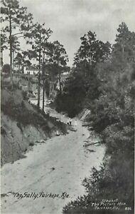 AL Alabama Fairhope The Gully ca 1910 Postcard by Stewart the Picture Man