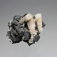 GOSHENITE BERYL with SCHORL from ERONGO MOUNTAINS, NAMIBIA  #2654