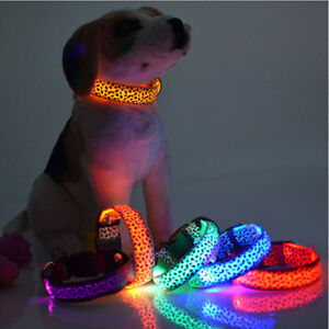 LED Dog Cat Pet Puppy Collar Night Safety Bright Light Flash Light Up Leather