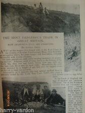 Egg Collecting Dangerous Sea Fowl Birds Eggs Bempton Cliffs Article Puffin 1899
