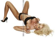 213 SEXY ART DECAL STICKER PIN UP GIRL STUNNING BUSTY BLONDE SEXY LEGS BREAST