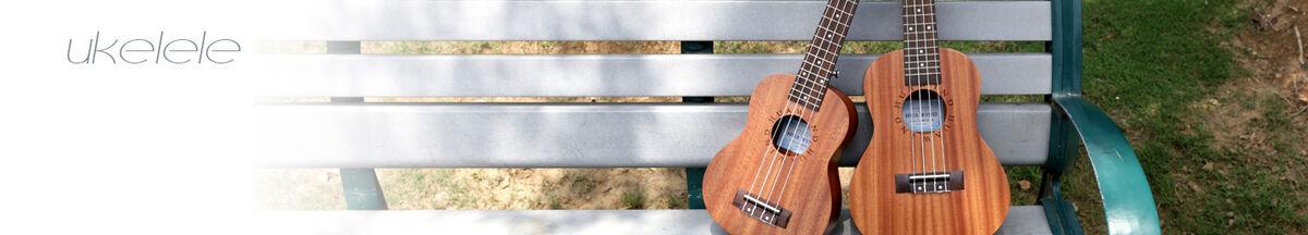 Hua Wind World's Musical Instrument
