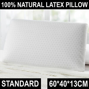 Dreamaker Luxurious Resilient Latex Head Support Polyester Cover Pillow Standard