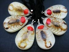 glow drop red bean design pendants 12 pcs New gold scorpion king