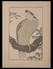 HOKUSAI, FAUCON - 1889 - JAPON,