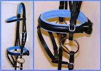 FSS German Posh BABY SKY BLUE Comfort Padded Dressage CRANK Riding Bridle Reins