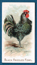 More details for n20 allen ginter tobacco cigarette card prize & game chickens black frizzled ex+