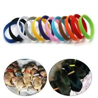12x Whelping Puppy Reusable Band Kitten Sdjustable ID Collar Pet Dog Cat SALE