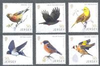 Jersey-Birds -Birdlife Links with China sept 2018 mnh set