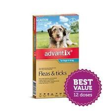 Advantix for Medium Dogs 4-10kg Aqua 12 Pack for fleas and paralysis ticks