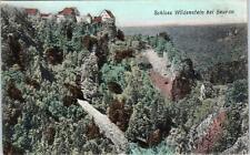 BADEN-WUERTTEMBERG, Germany  SCHLOSS WILDENSTEIN   c1900s   Postcard