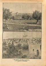 Panorama Beit-Djibrin Gaza Jerusalem Bethleem Palestine  WWI 1917 ILLUSTRATION