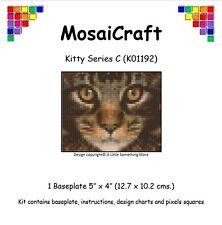 Kit De Arte Mosaico mosaicraft píxel Craft 'Kitty Serie C' pixelhobby
