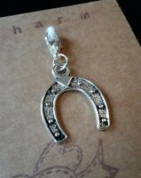 LUCKY HORSESHOE CLIP ON CHARM FOR BRACELET KEYRING BAG ZIP