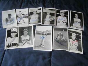 1961 Cincinnati Reds Baseball Autographed Brace Postcard Photo Collection (11)