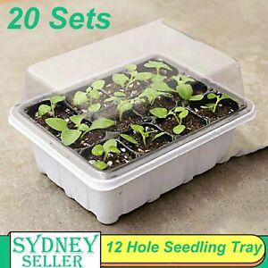 20 Sets Plant Seeds Grow Box Insert Propagation Nursery Seedling Starter Tray AU