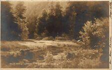 CPA Salon 1903 ISEMBART - Ravin dans le Doubs (217890)